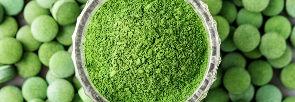 A Barley Grass Supplement